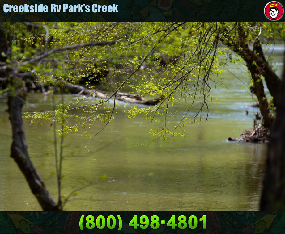 Creekside_Rv_Park_Photos